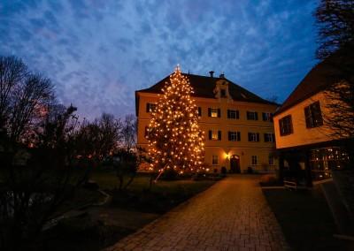 waldweihnacht-mergenthau-053