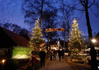 waldweihnacht-mergenthau-057