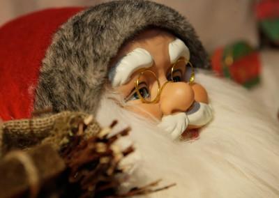 waldweihnacht-mergenthau-032